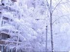 Первомайская зима Екатеринбурга