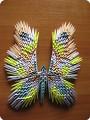 Бабочка (6)