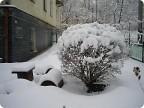 Зазывали весну - пришла зима