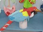 Попугай ара-1.