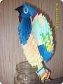 Мой попугайчик