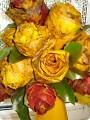 Osennie rozi
