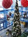 Предновогодние прогулки по Германии(как Германия готовится к Рождеству).