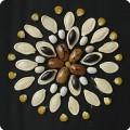 Аппликация из семян