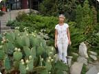 Никитский ботанический сад(кактусовая оранжерея) летняя площадка