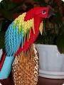 Вот и мой попугай.