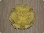 Кусудма Roses