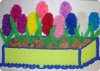 А у нас среди зимы гиацинты расцвели!