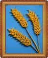 Поделка колосок пшеницы для детей 97