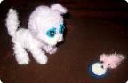 Котенок Тима и мышка Роза