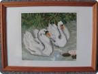 Вышивка крестом - Картина Лебеди на пруду.