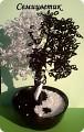 бисероплетение мастер-класс. схема бисера видео. деревья из бисера.