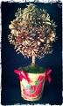 Новогоднее дерево из шишек.