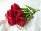 clay-flowers-3-00.jpg