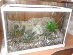 Сухой аквариум своими руками мастер класс 43
