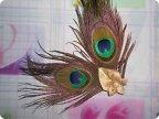 Павлиньи перья для поделок