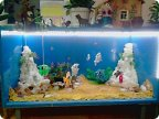 Как сделать аквариум в детском саду
