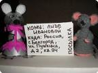 Новогоднее путешествие мышат