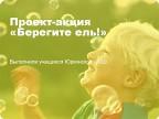 """Презентация проекта-акции """"Берегите ель!"""""""