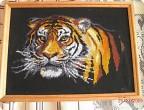 Символ года Тигр