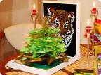Символ Нового 2010 года - Тигр с праздничной новогодней елкой