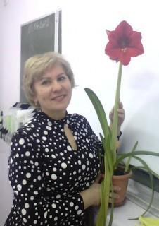 Будко Елена