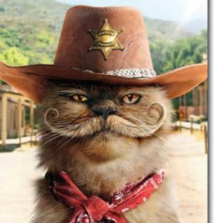 SheriffCat