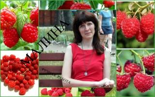 Малина Николаева