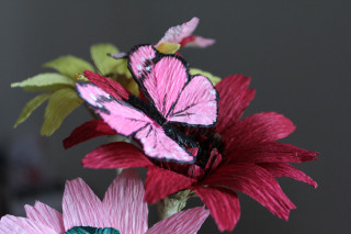 Anna Makes Flowers