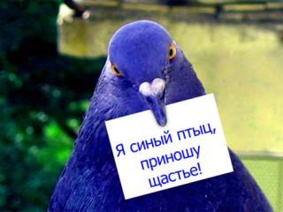 Людмила1604