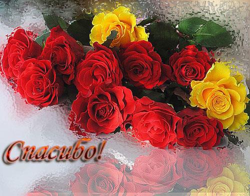 http://stranamasterov.ru/files/u11617/586fe22719ba.jpg