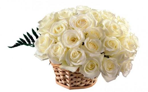 cveti401.jpg