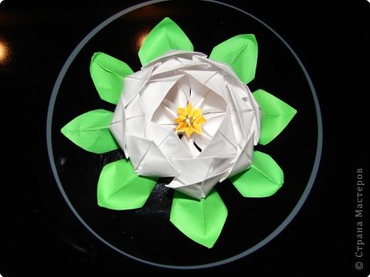 Оригами: ЛОТOС фото 2