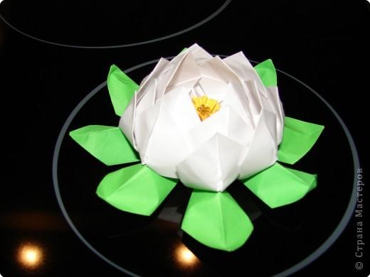 Оригами: ЛОТOС фото 1