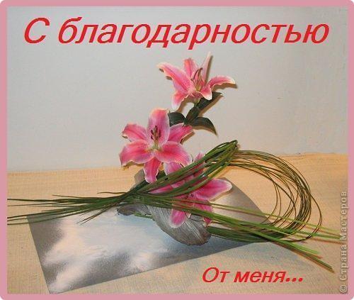Спасибо!!! фото 1