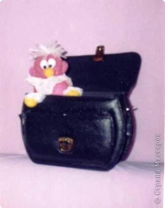 Кто живет в портфеле?
