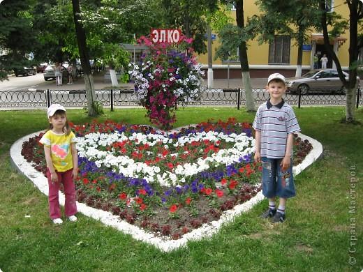 """В нашем городе уже третий год подряд проходит фестиваль-конкурс """" Городские цветы."""" Каждый раз мы с большим удовольствием созерцаем красоту, созданную природой и людьми. фото 5"""