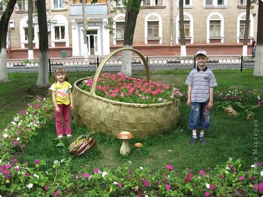 """В нашем городе уже третий год подряд проходит фестиваль-конкурс """" Городские цветы."""" Каждый раз мы с большим удовольствием созерцаем красоту, созданную природой и людьми. фото 10"""