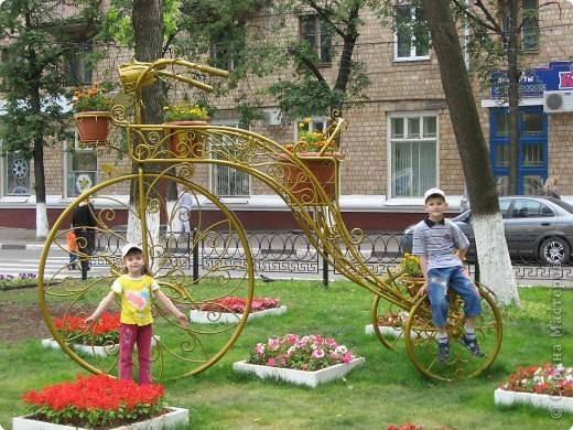 """В нашем городе уже третий год подряд проходит фестиваль-конкурс """" Городские цветы."""" Каждый раз мы с большим удовольствием созерцаем красоту, созданную природой и людьми. фото 14"""