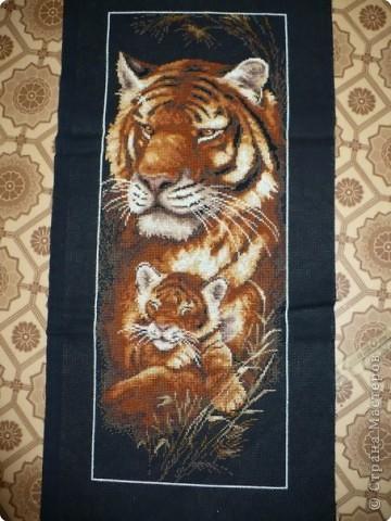 Вышивка крестом: Тигрица и тигрёнок