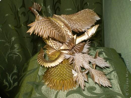 Птица-феникс фото 3