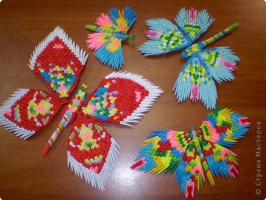 Эти свободные бабочки фото 1