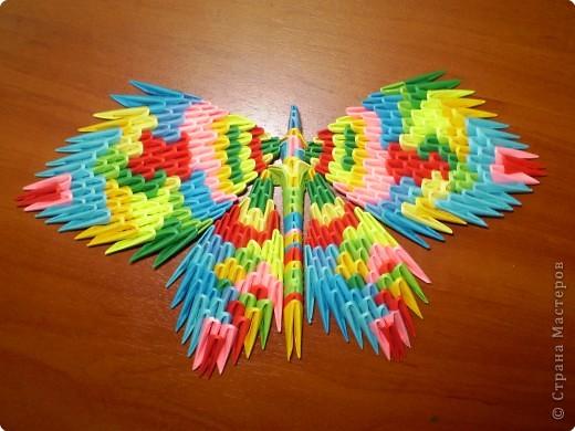 Эти свободные бабочки фото 3