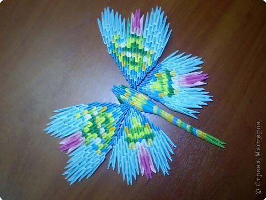 Эти свободные бабочки фото 4