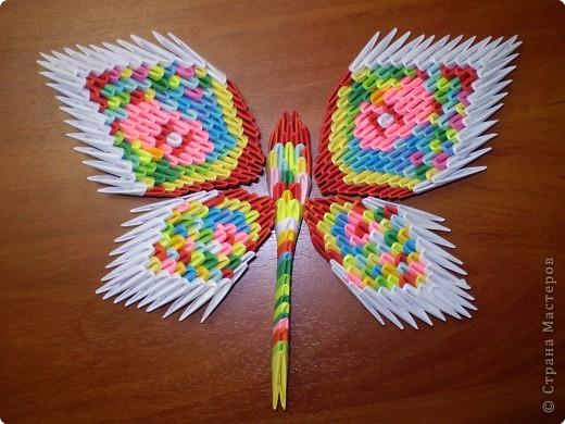 Эти свободные бабочки фото 5
