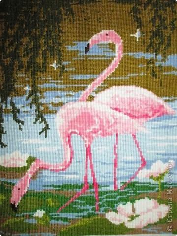 Вышивка крестом: Фламинго