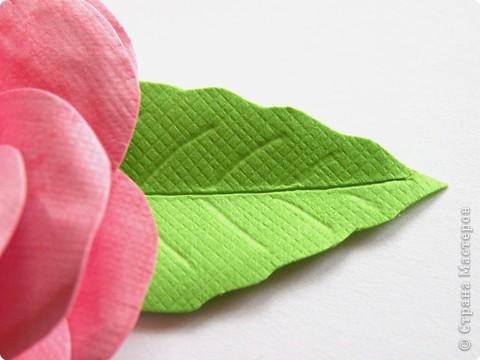 Бумагопластика, Квиллинг: Цветок фото 5
