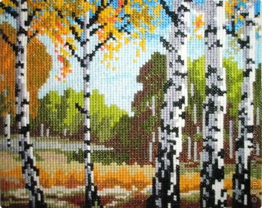 Вышивка крестом: Осень в березовой роще