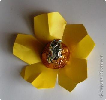 Сладкие цветы фото 8