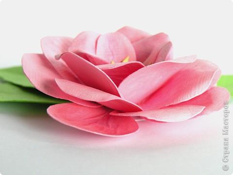 Бумагопластика, Квиллинг: Цветок фото 3